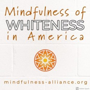 Mindfully Exploring the Meaning of Whiteness in American Society @ Zoom