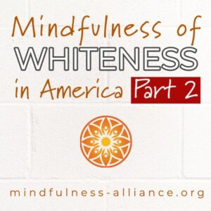Mindfully Exploring the Meaning of Whiteness in America: Part Two @ Zoom