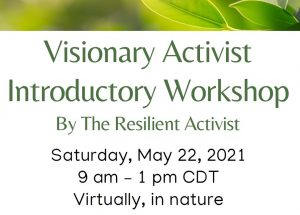 Visionary Activist Introductory Workshop @ on Zoom and/or out in Nature